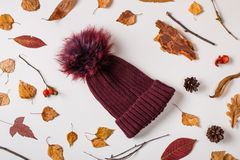Warm woolen cap and autumn leaves royalty free stock photo