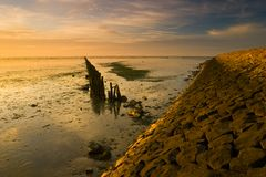 A warm yellow dike at the Waddensea Stock Image