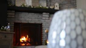 Warme brandbrandwonden in moderne eigentijdse woonkamer stock footage