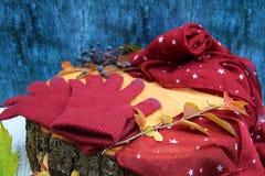 Warme Burgunder-Handschuhe mit einem Schal und einem Hut auf blauer Farbe des hölzernen Hintergrundes mit Herbstlaub und verringe Lizenzfreie Stockfotos