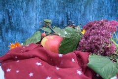 Warme Burgunder-Handschuhe mit einem Schal und einem Hut auf blauer Farbe des hölzernen Hintergrundes mit Herbstlaub und verringe Lizenzfreies Stockbild