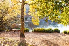 Warme de herfstmiddag in een botanisch park stock afbeelding
