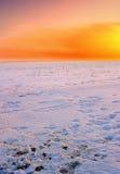Warme de winterzonsondergang Stock Foto's