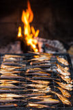 Warme gerookte vissen Stock Fotografie