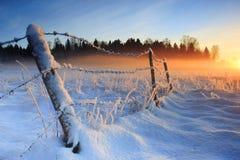 Warme koude de winterzonsondergang Stock Afbeeldingen