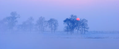 Warme koude de winterzonsondergang Royalty-vrije Stock Foto