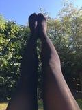 Warme legging op een de zomersdag stock afbeeldingen
