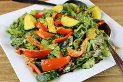 Warme plantaardige salade Royalty-vrije Stock Afbeelding