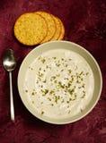 Warme romige soep en crackers Stock Afbeeldingen
