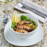 Warme salade met paling en rijst royalty-vrije stock afbeelding
