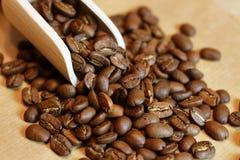 Warme stemming van koffiebonen Stock Afbeelding