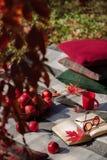 Warme Tage des Herbstes Indischer Sommer Picknick im Garten - Decke lizenzfreies stockbild