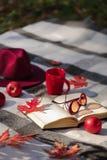 Warme Tage des Herbstes Indischer Sommer Picknick im Garten - Decke lizenzfreie stockfotografie