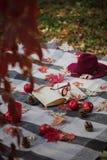 Warme Tage des Herbstes Indischer Sommer Picknick im Garten - Decke lizenzfreies stockfoto