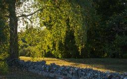 Warmer Herbstabend im alten Zustand stockfotografie