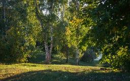 Warmer Herbstabend im alten Zustand lizenzfreies stockfoto