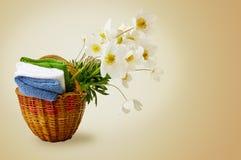 Warmer Hintergrund mit Blumen Lizenzfreie Stockfotos