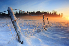 Warmer kalter Wintersonnenuntergang