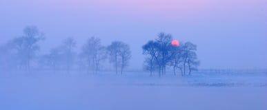 Warmer kalter Wintersonnenuntergang Lizenzfreies Stockfoto