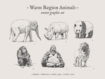 Warmer Regionstierweinlese-Illustrationssatz Lizenzfreie Stockfotos