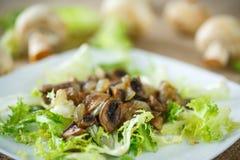 Warmer Salat mit Pilzen Stockfotos