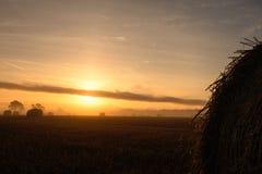 Warmer Sonnenaufgang über Ackerland Lizenzfreie Stockfotos