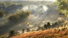Warmer Sonnenschein auf einem Wintergast Spritzen Sie die Wälder und Berge sind bei Khao Kho, Phetchabun-Strahl großartig Lizenzfreie Stockfotos
