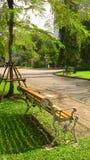Warmes Licht und Schatten in der Stadt parken Stockfotografie
