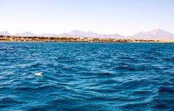 warmes Smaragdwasser des Meeres in Ägypten lizenzfreie stockfotografie