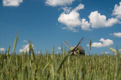Warmia landscape Royalty Free Stock Photography