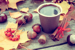 Warming coffee cup and autumn still life on table Stock Photos