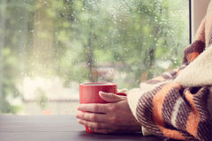 Warming drink at home Royalty Free Stock Photos