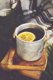Warming tea with lemon in metal mug, books and checked plaid Royalty Free Stock Photos