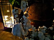 Warmth. Country warmth homestyle cotton barrel royalty free stock photo
