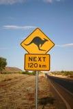 Warnende Kängurus voran Stockfoto