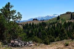 Warner góry, Modoc okręg administracyjny, Kalifornia Obraz Stock