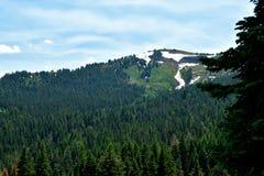 Warner góry, Modoc okręg administracyjny, Kalifornia Obraz Royalty Free