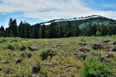 Warner góry, Modoc okręg administracyjny, Kalifornia Fotografia Stock