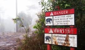 Warning Beware of elephant. Forest Royalty Free Stock Image