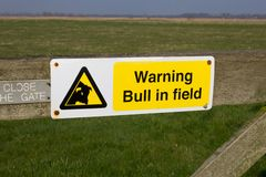 Warning Bull in Field Sign Stock Photos