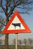 Warning cattle road sign Royalty Free Stock Photo