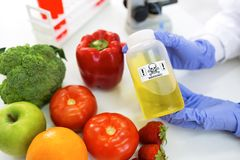 Warning, danger sample at food, genetics modified. Vegetables and ts stock photo