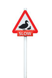 Warning Duck sign on post. Isolated on white background Royalty Free Stock Images