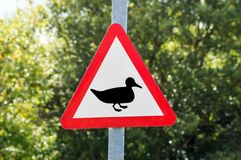 Warning of Ducks Sign Stock Photo