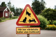 Warning road sign: be careful, cats on the road. Warning road sign on swedish village crossroads, saying: Here live valuable cats without knowledge how traffic stock photography