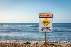 WARNING: SHARKS SIGHTED. A warning sign indicating sharks have been sighted in the water at Ali'i Beach in Haleiwa, on the North Shore of Oahu, Hawaii royalty free stock image