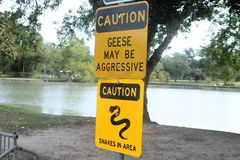 Warning Sign for Aggressive Geese and Snakes Royalty Free Stock Photo