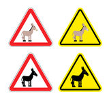 Warning sign attention donkey. Dangers yellow sign stupid man. A. Ss on red triangle. Set of road signs against idiocy. fool on road Warning Stock Photography