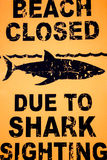 Warning sign: Beach closed due to shark sighting. Stock Photos