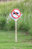 The warning sign do not use vehicle horn with flowering grass ba Stock Photography